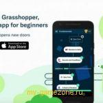 Игра Grasshopper
